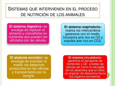 did 224 ctica de ciencias naturales los animales y su peligro sistemas q intervienen en la nutricion conocimiento del