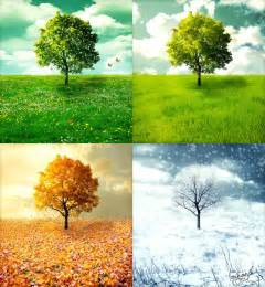 Of true gold that is the story of the 4 seasons well and truly told