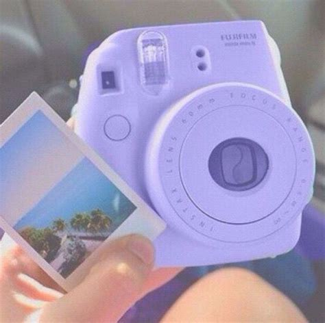purple polaroid pictures of pictures and polaroid on