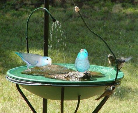 bird bath for the home pinterest
