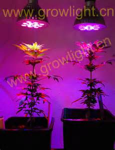 led grow light curriwitqua garden led grow lights strips