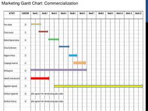 6 Month Marketing Plan Template by G7 Marketing Plan And Commercialization