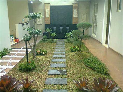 jual tanaman hias model tanaman rumah  lapak johan