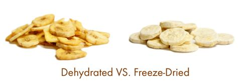 freeze dried food freeze dried food vs dehydrated the readyblog