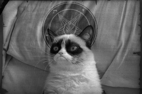 grumpy cat black metal by sadbalore on deviantart