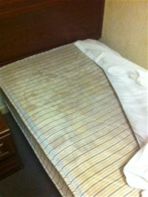 select comfort mold after sleeping one night i noticed the mattress was