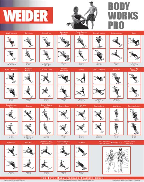 weight bench exercise chart is weider ultimate body works a good home gym honest review