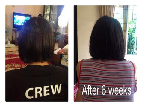 Shoo Kuda Mane N Before After ketsy s stories get your and healthy hair with mane