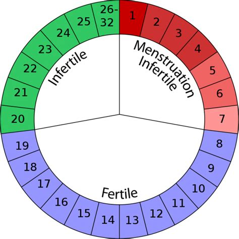 Calendar Rhythm Method The Rhythm Method