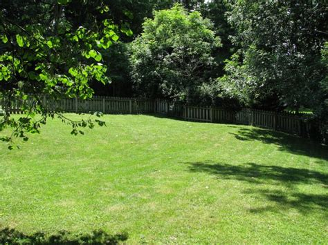 a backyard researchers say your backyard is good for your health