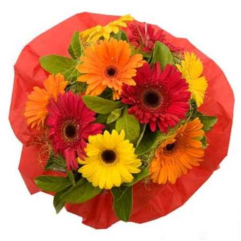 Cheap Florist by Canberra Florist Cheap Flower Delivery Canberra Local