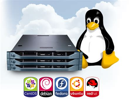 best linux hosting top 5 cheap linux vps web hosts to try in 2018