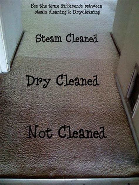 How Long Do Steam Cleaned Carpets Take To Dry Norfolk Carpet Cleaning Services Rug Cleaning
