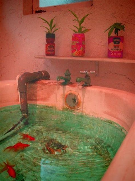 fish in bathtub goldfish tub environments pinterest fish tanks