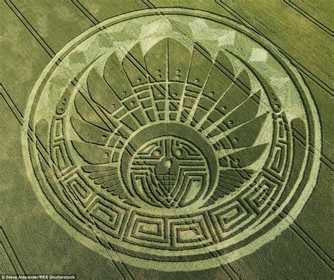 crop circle tattoo salisbury and reveal crop circle secrets