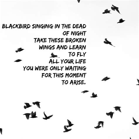 take these broken wings and learn to fly tattoo blackbird singing in the dead of take these broken