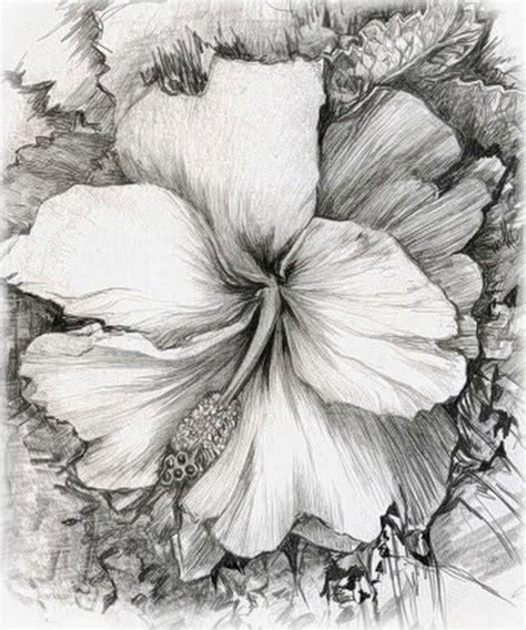 imagenes de flores sombreadas pintura y fotograf 237 a art 237 stica dibujos a lapiz de