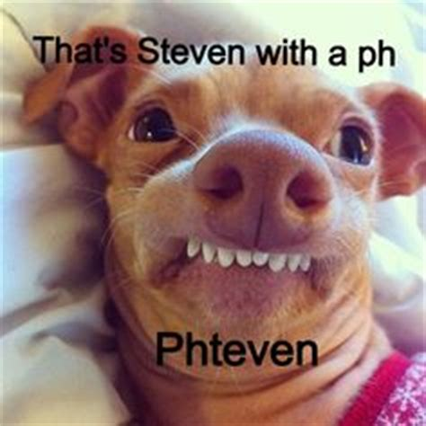 Ph Memes - 1000 images about steven with a quot ph quot on pinterest tuna
