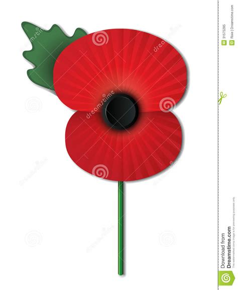 remembrance poppy royalty free stock photo image 31575285