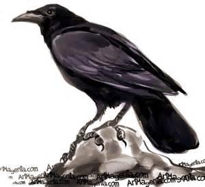 Dask birds american crow
