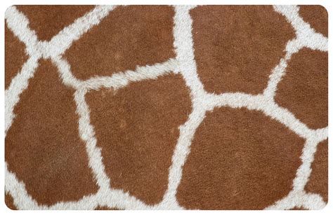 Giraffe Area Rug Giraffe Print Area Rug Best Giraffe Decor For Your Home Out Of The Giraffe Print Area Rugs