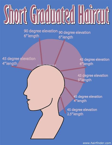 haircut diagrams how to short graduation cut cosmetology pinterest