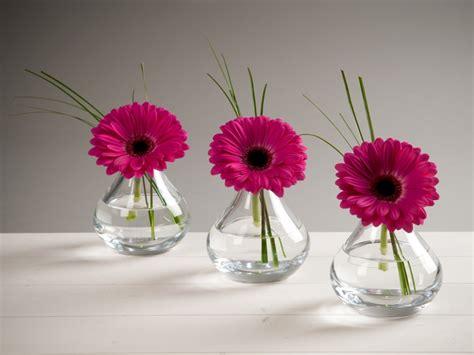 Gerbera Arrangements Vases by Trio Of Gerbera In Lsa Sprig Vases