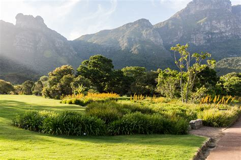 How To Plan Your Visit To Kirstenbosch National Botanical Cape Town Botanical Gardens