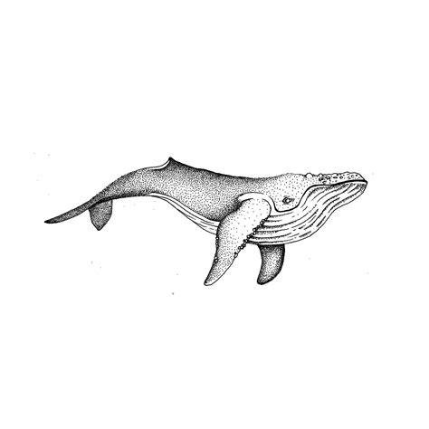whale tattoos designs whale made small custom
