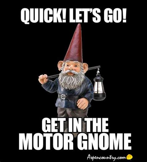 Gnome Meme - 170 best images about gnome way on pinterest