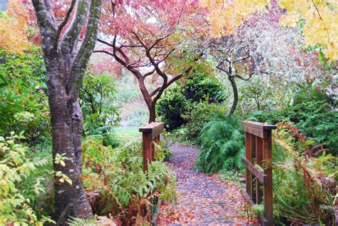 beautiful garden movie visit this beautiful secret garden in oregon