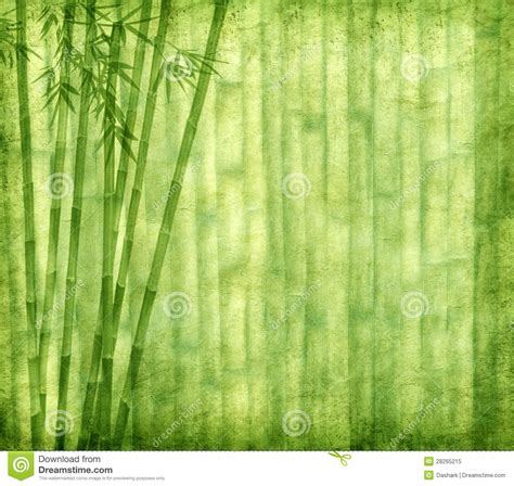 Paper From Bamboo - bamboo on grunge paper texture royalty free stock