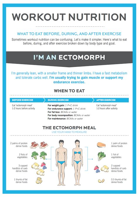 ectomorph workout pdf sport fatare