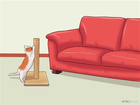 how to stop cats scratching leather sofa stop a cat from clawing furniture