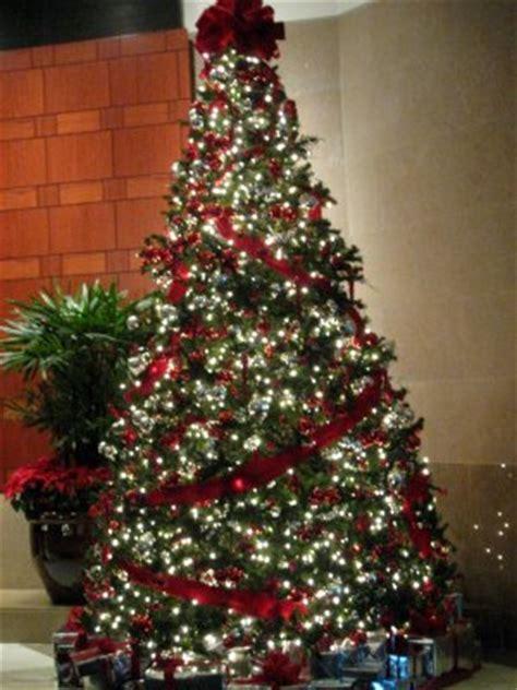 arboles navidad naturales 191 qu 233 pasa con los 225 rboles naturales despu 233 s de navidad energiverde