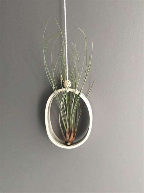 Lv Sling Ovale Dove airplant cradle sling hanging planter display airplantholder