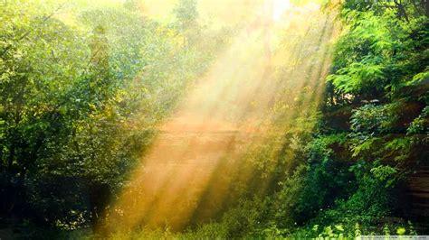 imagenes hermosas y relajantes hermosos paisajes con m 250 sica relajante de fondo vol1 youtube