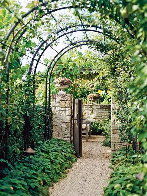 Ideas For Metal Garden Trellis Design Best 25 Garden Arch Trellis Ideas On Garden Arches Garden Arbor And Garden Entrance