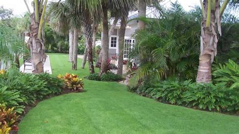 Florida Backyard Landscaping Ideas Tropical Hedges For Privacy Search Tropical Gardens Florida Landscaping