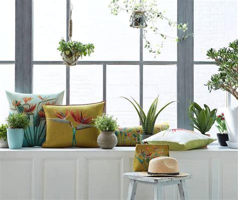 h ngepflanzen wohnzimmer passende pflanzen und blumen f 252 r jeden wohntyp
