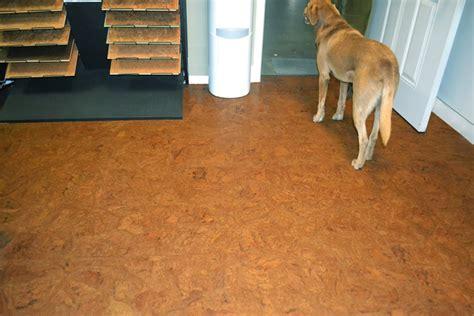 best flooring for dogs quiet corner