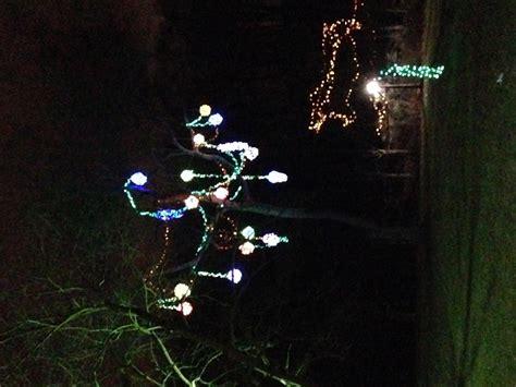 best winter festival of lights displays skylon tower