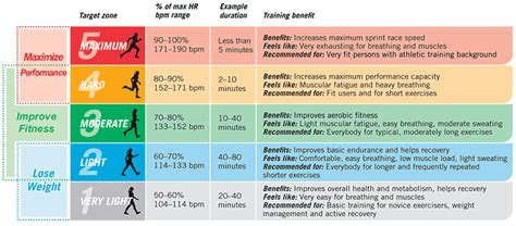weight management zone pulse rate chart rate chart measure your pulse