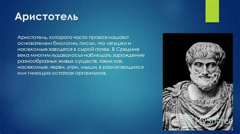 aristotle biography sparknotes sparknotes aristotle study questions and suggested essay
