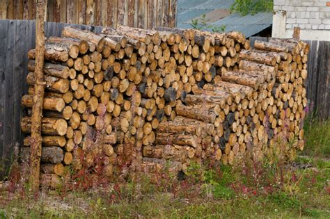 what is the best firewood for a fireplace fireplaces