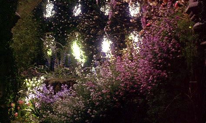 The Secret Garden Flowers Gif Find Share On Giphy Secret Garden Flowers