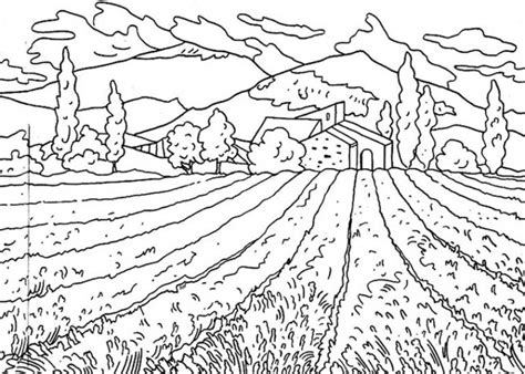 coloring pages field of flowers flower field of nature coloring page flower field of