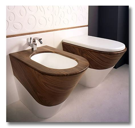 Definition Of Bidet by Ditto The Bidet Dual Flushing And Other European