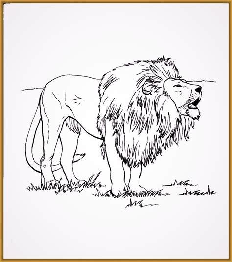 imagenes de leones faciles para dibujar imagenes de leones salvajes rugiendo archivos imagenes