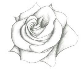 Home Decorations Catalogs photo beautiful flower pencil drawings images of simple